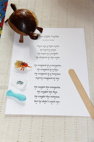 The Little Turtle Poetry Basket (Photo from Chasing Cheerios)
