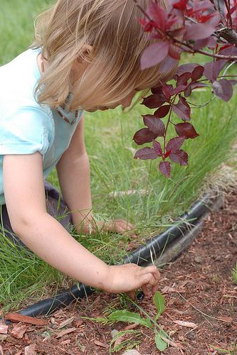 Child-Led Gardening (Photo from Montessori ici)