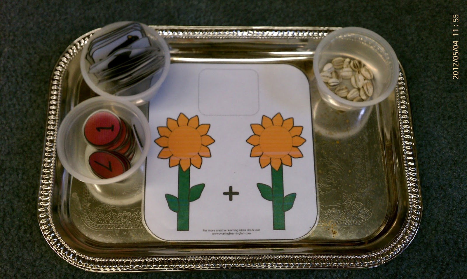 Sunflower Seed Addition (Photo from Lesson Plans to Pots and Pans)