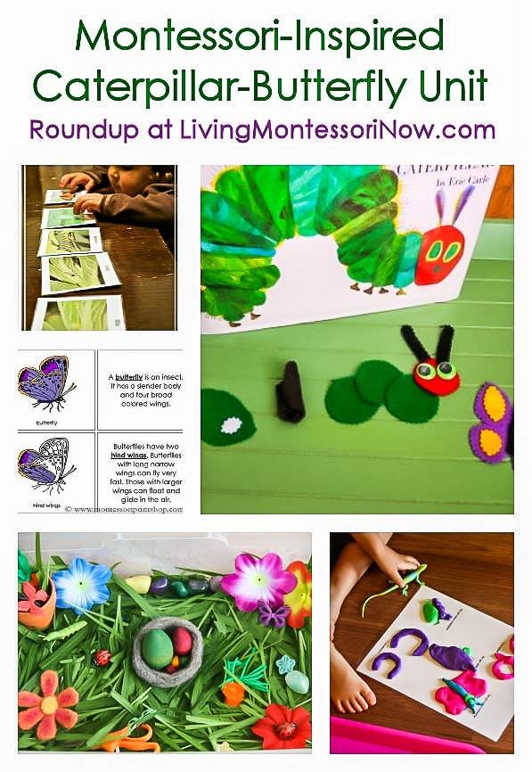 Montessori-Inspired Caterpillar-Butterfly Unit