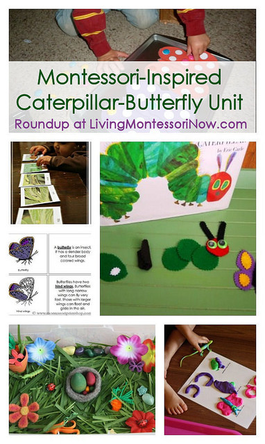 Montessori-Inspired Caterpillar-Butterfly Unit