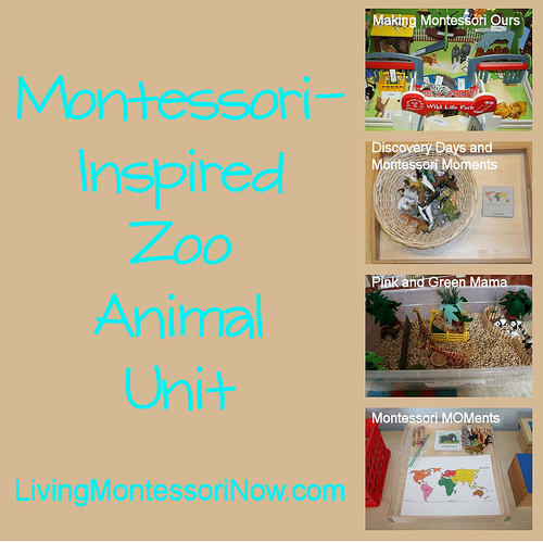 Montessori Monday – Montessori-Inspired Zoo Animal Unit