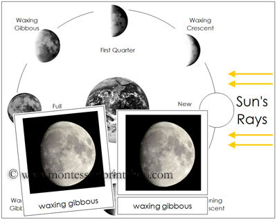 Phases of the Moon Cards and Chart (Image from Montessori Print Shop)