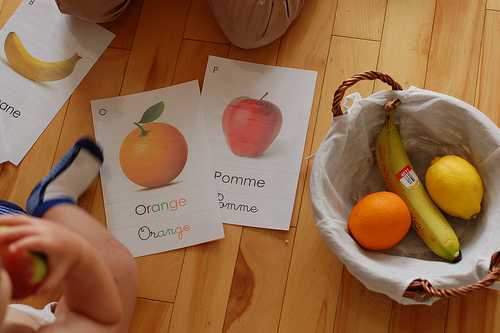 Fruit Activity for a 16 Month Old (from Montessori ici)