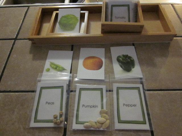 Seed Collection Matching (Photo from Little Schoolhouse in the Suburbs)