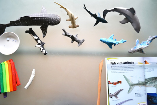 Making Shark Models (Photo from How We Montessori)
