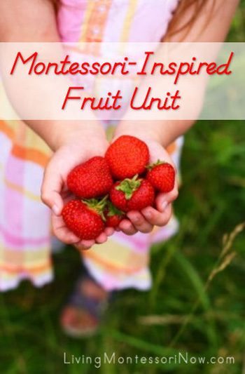 Montessori-Inspired Fruit Unit
