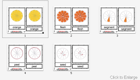Parts of the Orange Cards (Image from Montessori Helper)