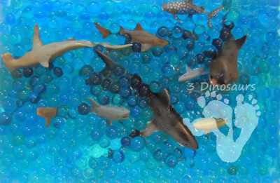 Shark Water Bead Sensory Bin (Photo from 3 Dinosaurs)