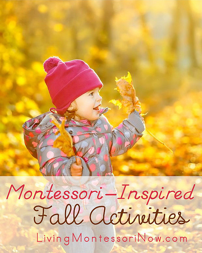 Montessori-Inspired Fall Activiites