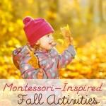 Montessori-Inspired Fall Activities