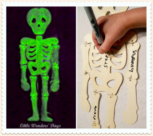 Glow in the Dark Skeleton (Photo from Little Wonders' Days)