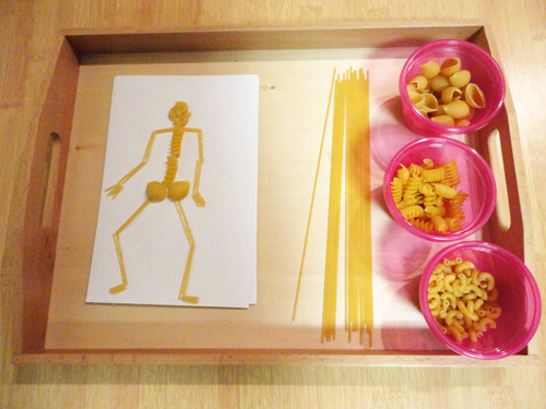 Making a Skeleton out of Pasta (Photo from Discovery Days and Montessori Moments)