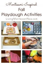 Montessori Monday – Montessori-Inspired Fall Playdough Activities