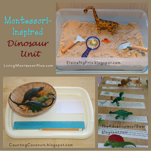 Montessori-Inspired Dinosaur Unit