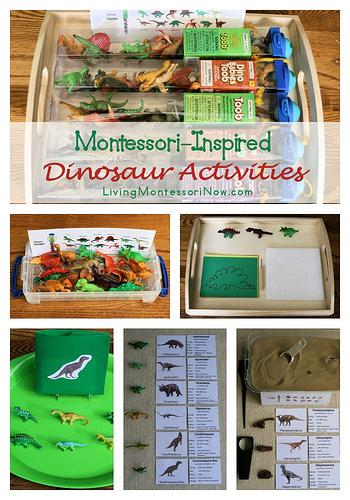 Montessori-Inpsired Dinosaur Activities Using Dinosaur Replicas