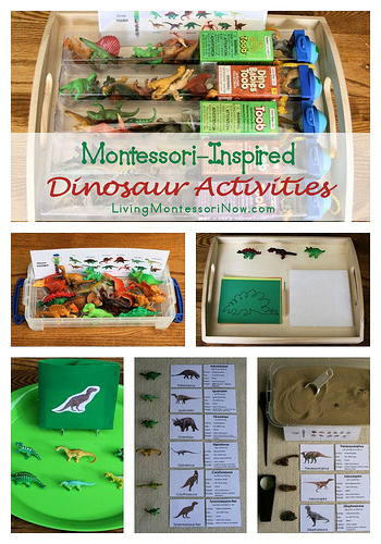 Montessori-Inspired Dinosaur Activities