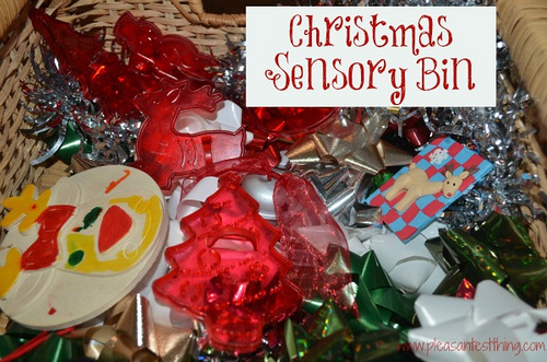 Christmas Sensory Bin (Photo from The Pleasantest Thing)