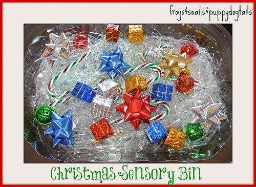 Christmas Sensory Bin (Photo from Frogs and Snails and Puppy Dog Tails)
