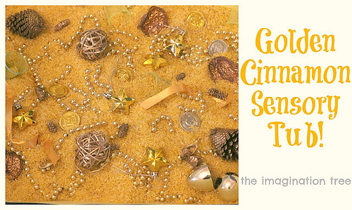 Golden Cinnamon Sensory Tub (Photo from The Imagination Tree)