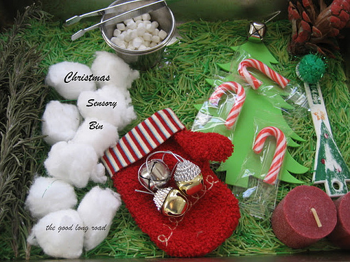 Christmas Sensory Bin (Photo from The Good Long Road)