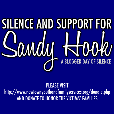Blogger Day of Silence and Support for Sandy Hook