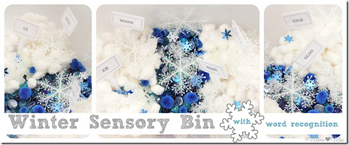 Winter Sensory Bin with Word Recognition (Photo from Mama Miss)