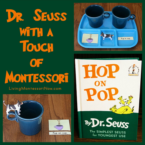 Dr. Seuss with a Touch of Montessori