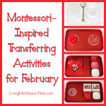 Montessori-Inspired Transferring Activities for February