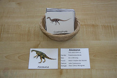 Dinosaur Cards (Photo from Counting Coconuts)