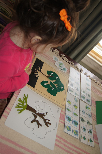 Parts of a Tree Work (Photo from Making Montessori Ours)