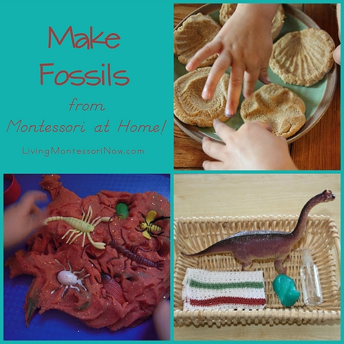 Montessori Monday – Make Fossils from Montessori at Home!