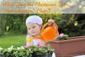 What does the Montessori term normalization mean