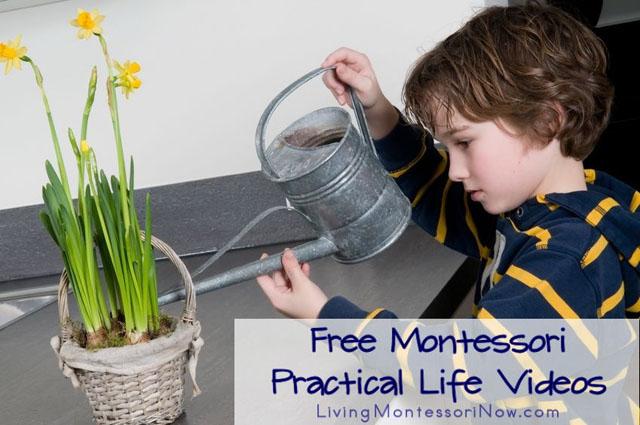 Free Montessori Practical Life Videos