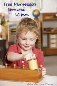 Free Montessori Sensorial Videos