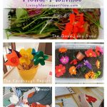 Montessori Monday – Montessori-Inspired Flower Activities