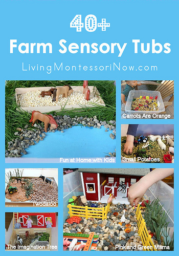 40+ Farm Sensory Tubs