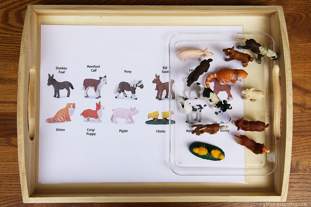 Farm Animal Matching Tray using Safari Ltd TOOB Key