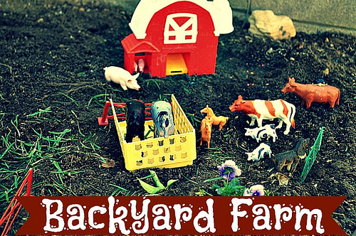 Backyard Farm (Photo from Blog Me Mom)