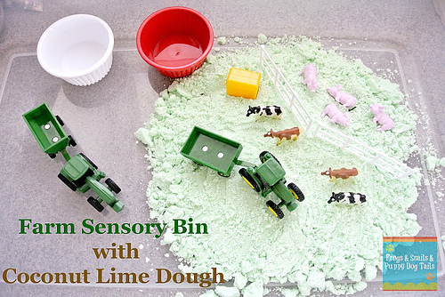 Farm Sensory Bin with Coconut Lime Dough (Photo from Frogs & Snails & Puppy Dog Tails)