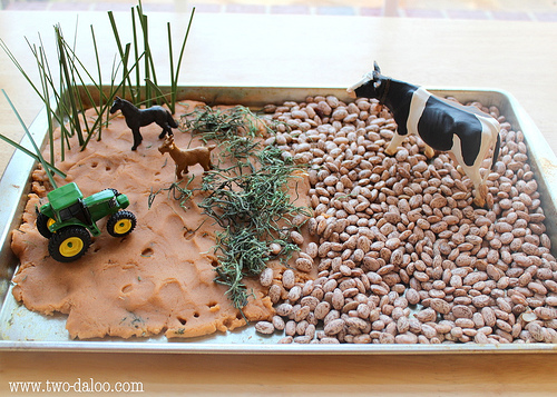 Farm Small World (Photo from Twodaloo)