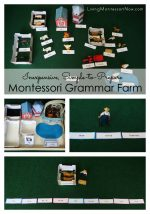 Inexpensive, Simple-to-Prepare Montessori Grammar Farm