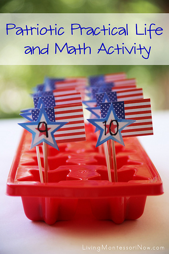 Patriotic Practical Life and Math Activity