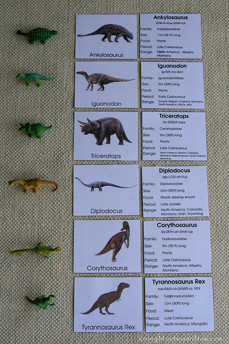 Montessori-Inspired Dinosaur Matching Activity