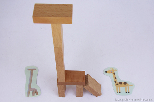 Building and Matching Objects Activity