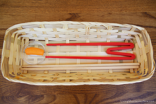 Sushi Transfer Activity