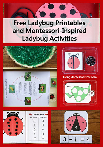 Free Ladybug Printables and Montessori-Inspired Ladybug Activities