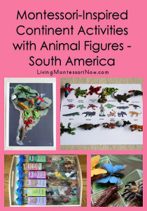 Montessori-Inspired Continent Activities with Animal Figures - South America