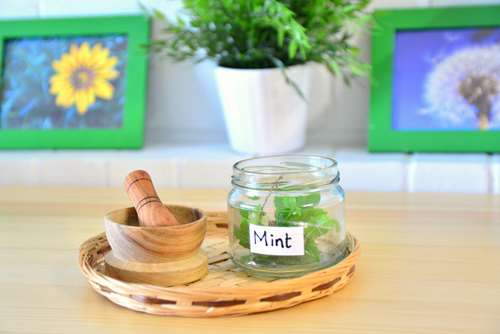 Smelling and Herb Crushing Tray from MELA Playgroup (Photo by How We Montessori)