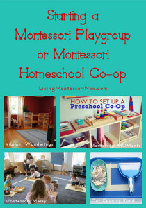Starting a Montessori Playgroup or Montessori Homeschool Co-op